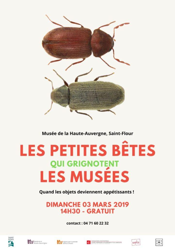 Les petites bêtes qui grignotent les musées