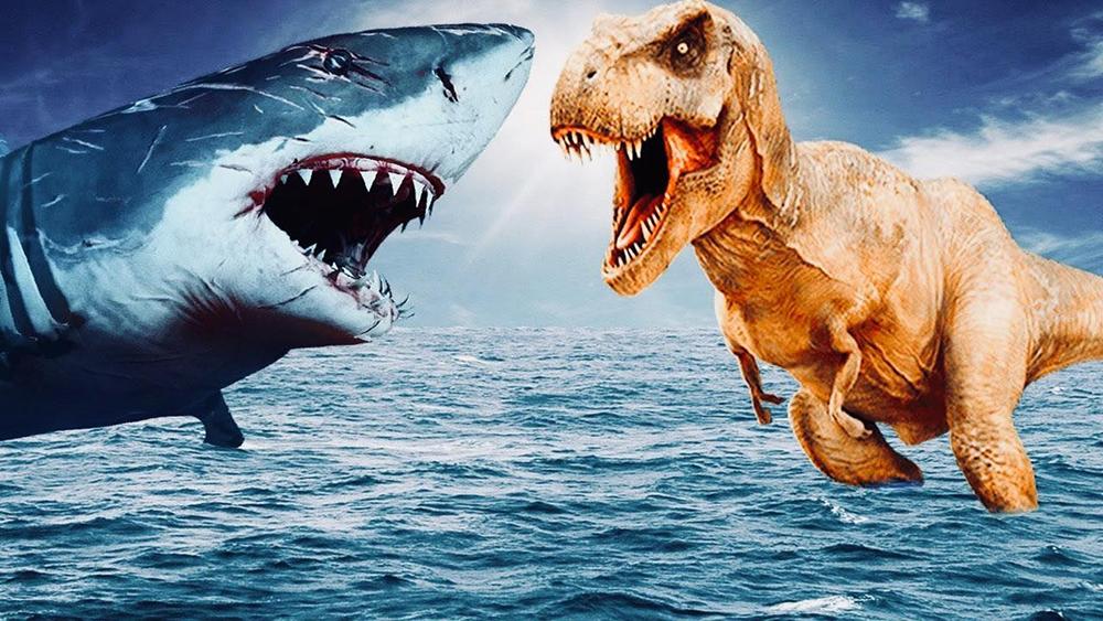 Exposition DinoShark – 12 et 13 juin 2021