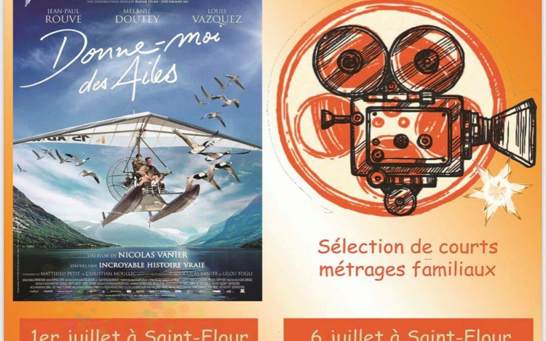 Cinéma de plein air – ANNULÉ