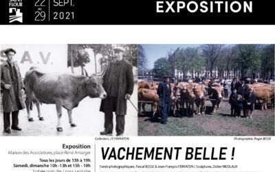 EXPOSITION – VACHEMENT BELLE !